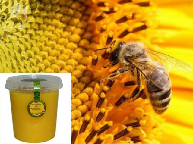 Продам мед подсолнечника 85 р/кг.