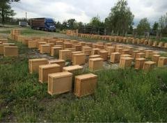 Продаю пчелопакеты 35 штук